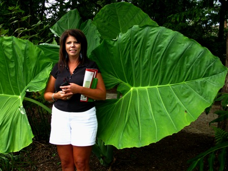Karen in front of Colocasia gigantea Thailand Giant